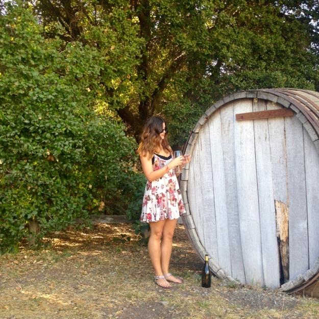 Picchetti Winery 6