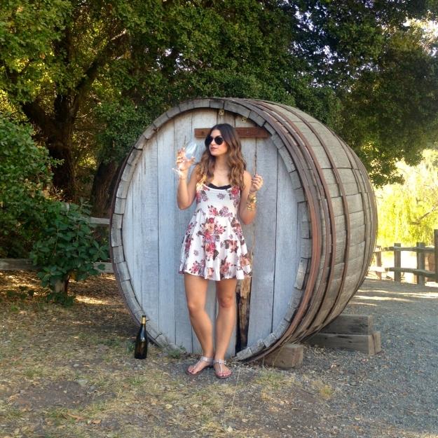 Picchetti Winery 9